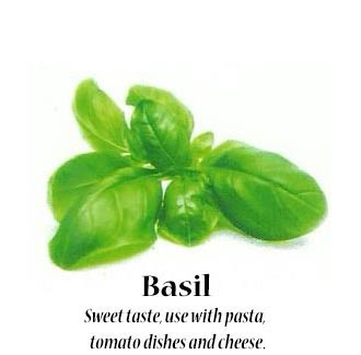 basil_text
