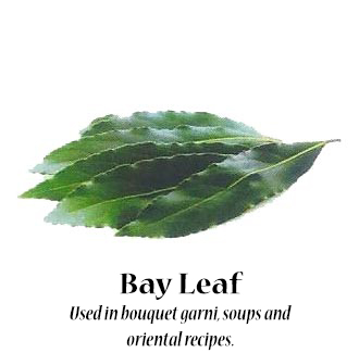 bayleaf_text