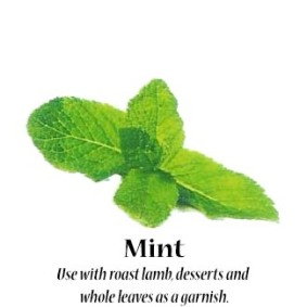 mint_text