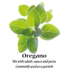oregano_text