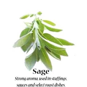 sage_text