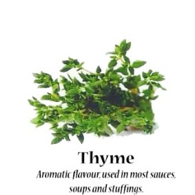 thyme_text